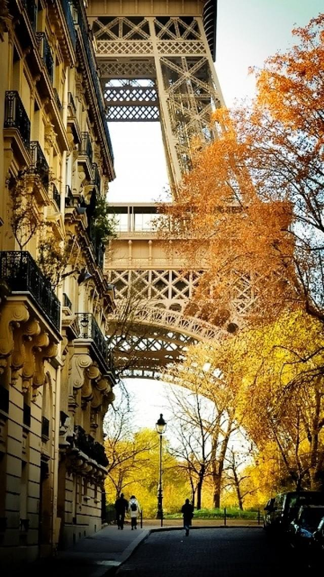 fall in paris france - photo #4