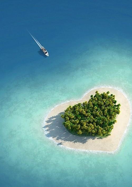 زفاف - قلب جزيرة ...