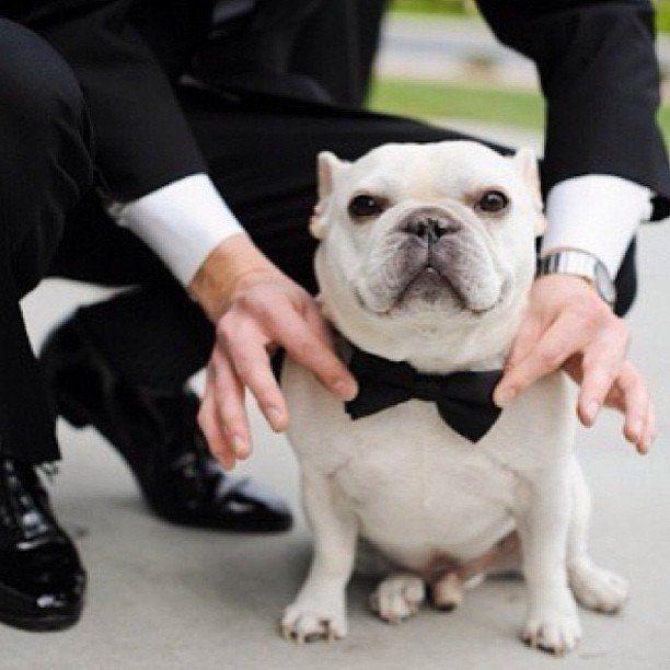 Свадьба - Свадьба на обуви