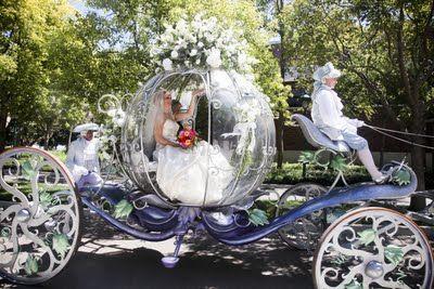 Hochzeit - Disney Hochzeiten und Flitterwochen
