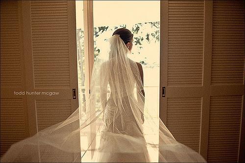Wedding - View
