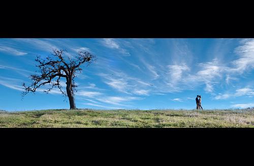 "Mariage - ""John & Jessica ... assis par un arbre. Embrasser .."""