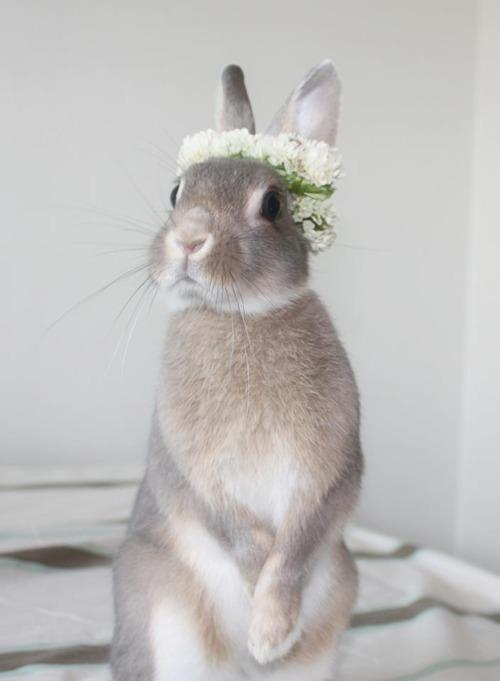 Hochzeit - Ostern Frühling ..