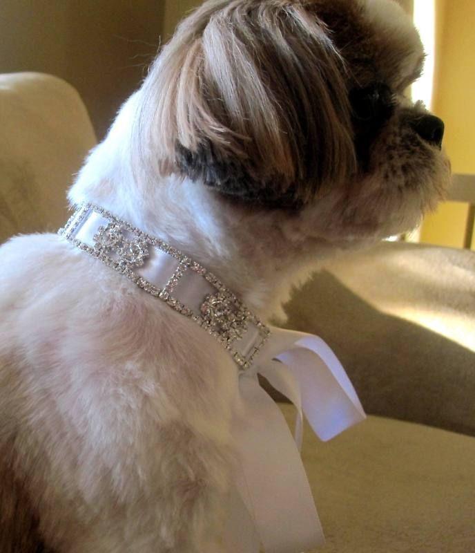 Свадьба - ПЭТ горный хрусталь ожерелье ювелирные изделия щенка ошейник