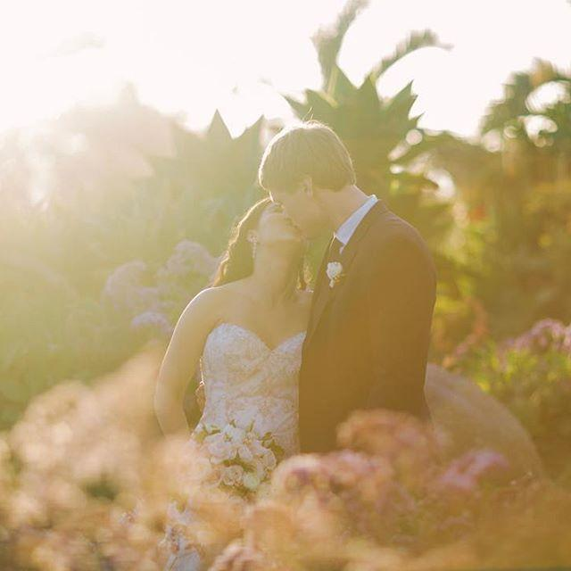 Wedding - joielala