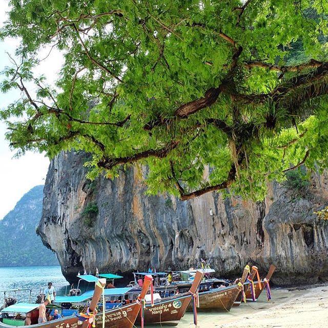 زفاف - Thailand Honeymoon