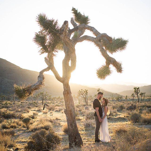 Düğün - Ruffled