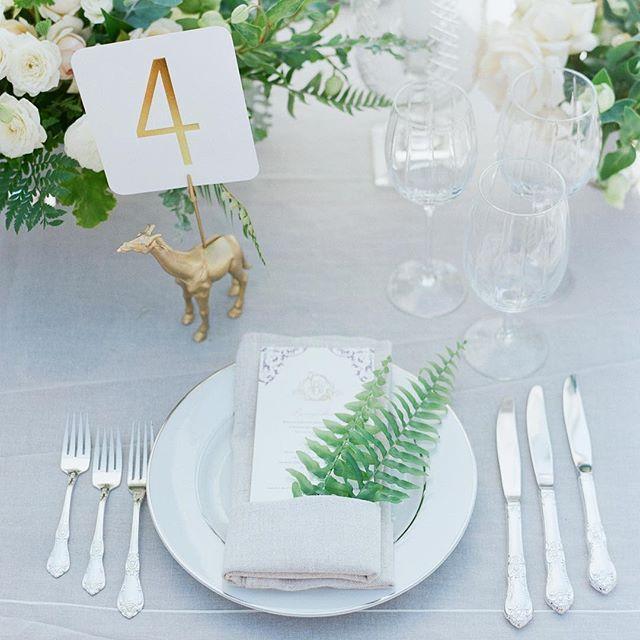 Wedding - elizabeth messina