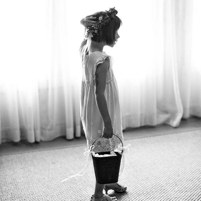 Wedding - Katie Stoops