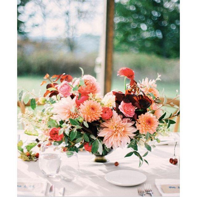 Wedding - Poppies & Posies