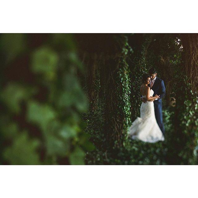 Hochzeit - Douglas Polle