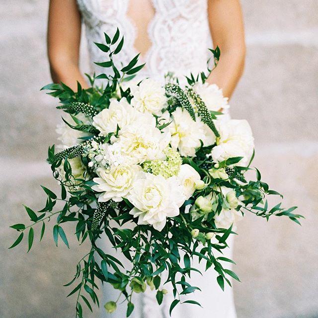 زفاف - Martha Stewart Weddings