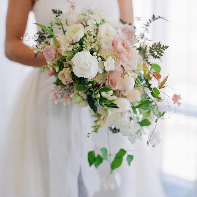 زفاف - joel serrato