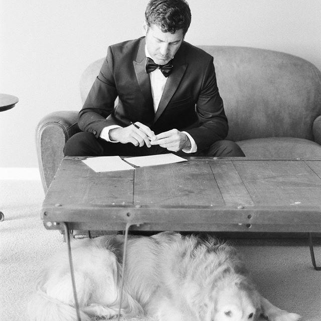 زفاف - Steve Steinhardt