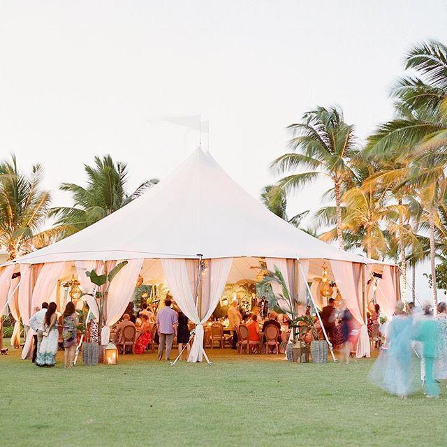Wedding - Wedding Photographer