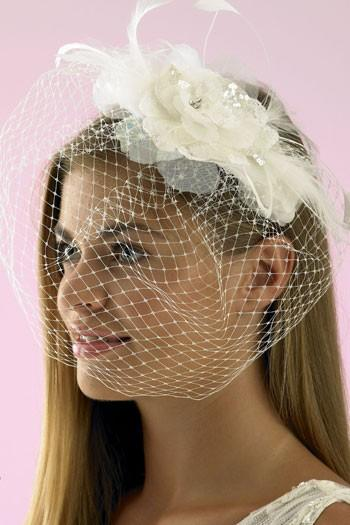 Свадьба - Vintage Veil Birdcage