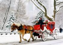 wedding photo - Christmas Wedding Carriage Car Idea