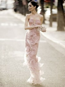 wedding photo - Armani Prive Pale Pink Strapless Evening Gown ♥ Eugenia Silva for Armani