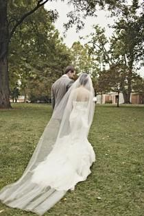 wedding photo -  Veils