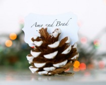 wedding photo - Christmas Wedding Escort Cards, Pine Cone, Woodland Wedding, 10 Name Place Table Setting Plan Rustic Country Theme Winter Snow White - New