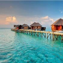 wedding photo - Honeymoon In Maldives