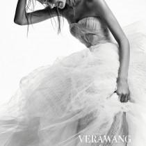 wedding photo - VERA WANG