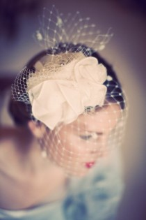 wedding photo - Vintage Birdcage Veil