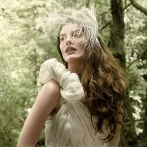 wedding photo - Veil