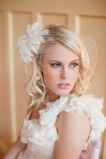 wedding photo - Birdcage Veil Vintage